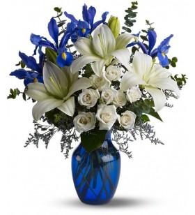 Beyaz lilyum ve mavi