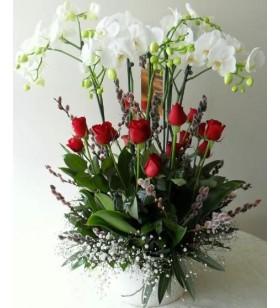 4 dal beyaz orkide  tane kırmızı gül