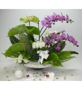 beyaz gül ve pembe orkideli yuvarlak arajman